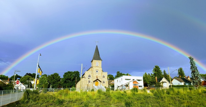 Diocesan News Online