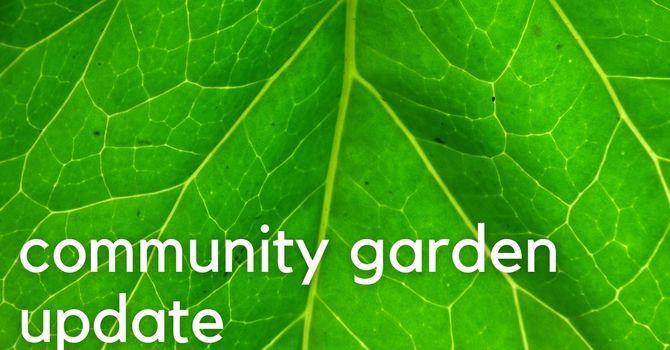 Community Garden Fall update image