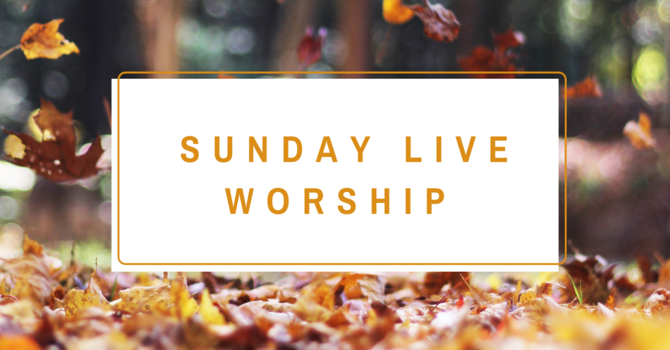 Live Sunday Worship Services