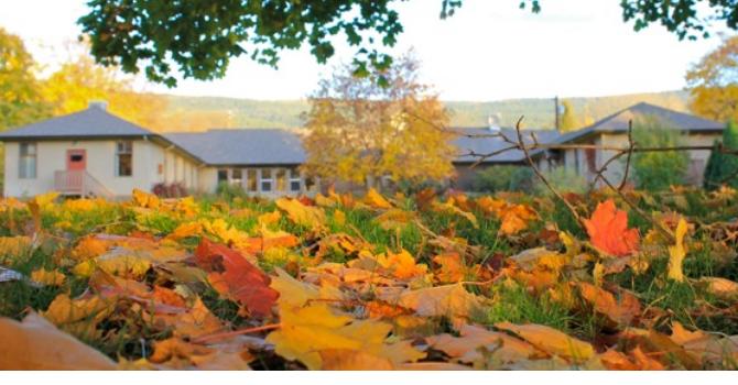 Fall Programs at Naramata Centre image