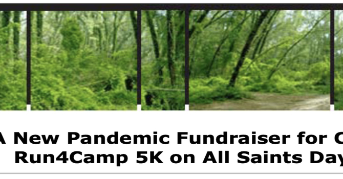 A New Pandemic Fundraiser for Camp Mount Luther!