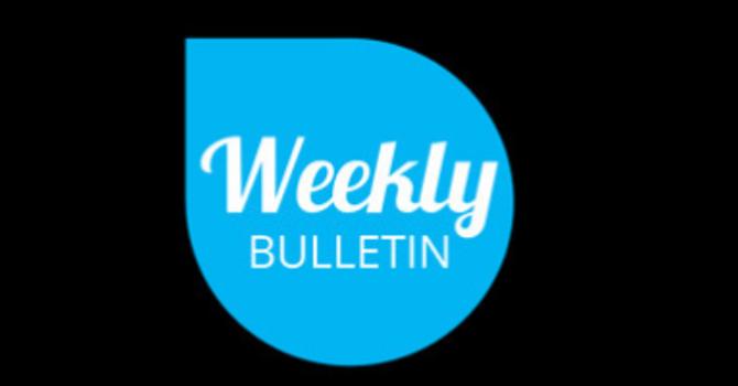 Weekly Bulletin - November 10, 2019 image