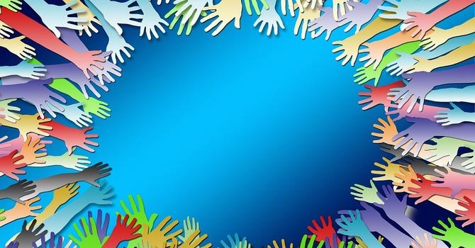 NEWS:  Survey - Volunteer Bank image