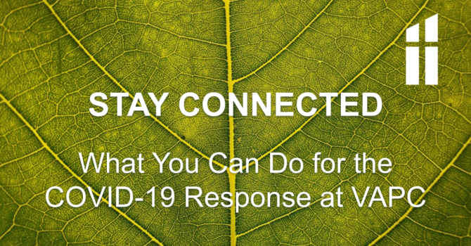 COVID-19 Response - What You Can Do image