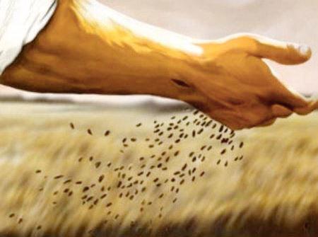Psalm 92: 1-4 and Mark 4:26-34   Como Lake United Church