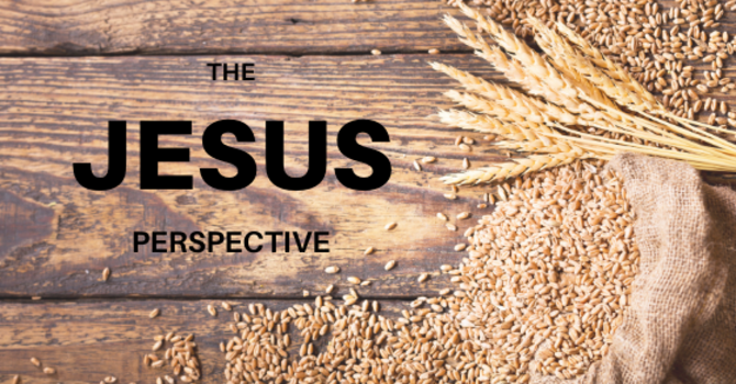 The Jesus Perspective