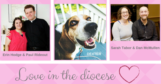 Love in the diocese image