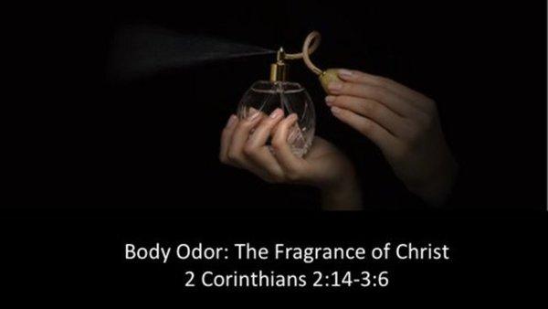 Body Odour - The Fragrance of Christ