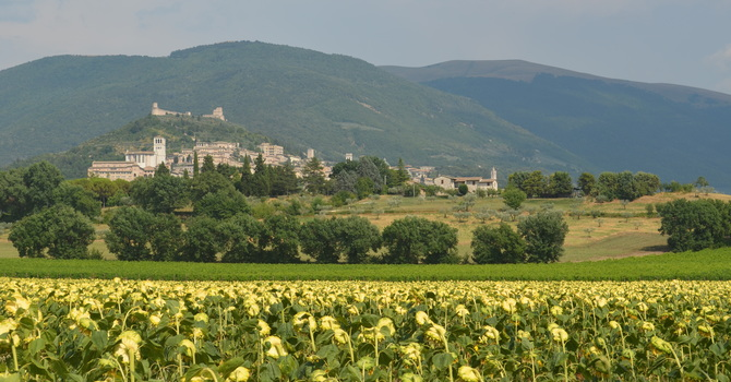 PILGRIMAGE TO ASSISI: On The Road with Francis of Assisi image