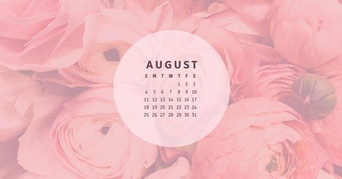 August - What's Coming This Month? image