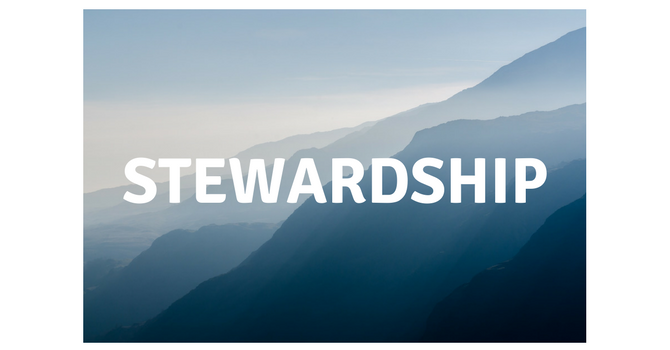 Stewardship Liaison