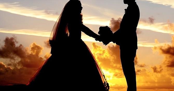 Wedding Ceremony Officiation