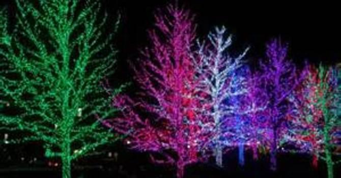 Catholic Singles - Christmas Lights Tour Dec 16