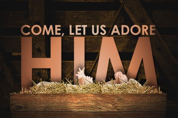 Advent: Adore