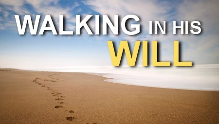 Walking in His Will