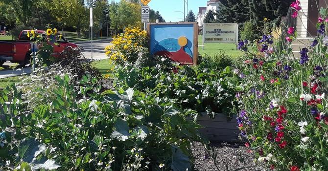 Sunshine Community Garden