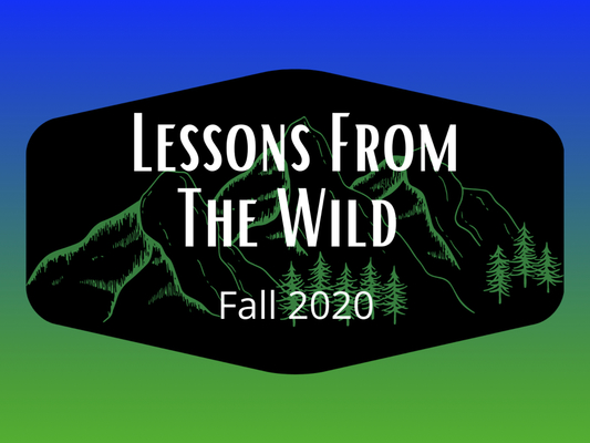 The Land Between: Lessons from the Wild