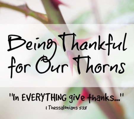 Thankful for thorns