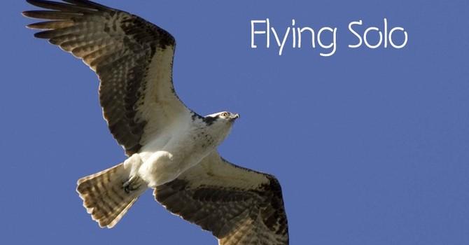 TWU Law School Court Case: Flying Solo image