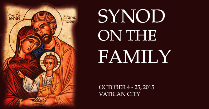 Synod on the Family image