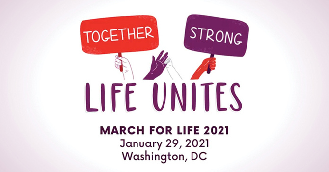 March For Life Trip