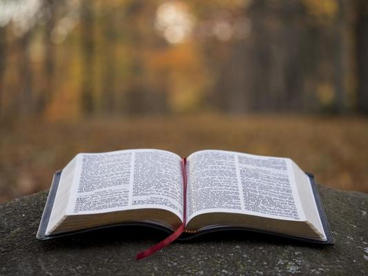 Psalms: The Bible's Prayer Book