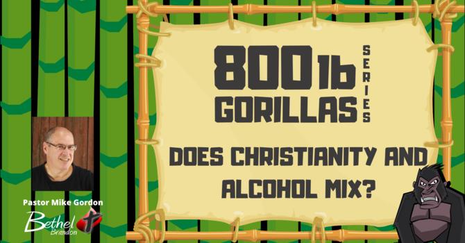 800 lb Gorilla Pt. 3