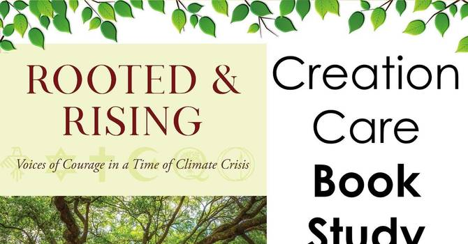 Creation Care Team Book Study