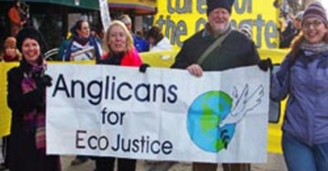 Anglicans for Eco-Justice Web Content image
