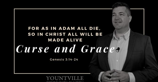 Curse and Grace