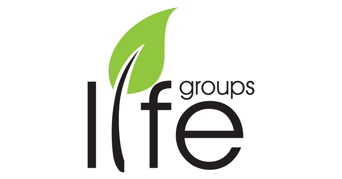 Adult Life Groups and Sunday School