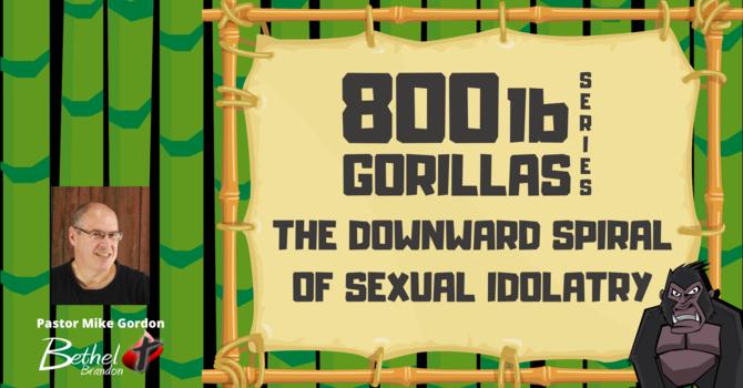 800 lb Gorilla Pt. 4