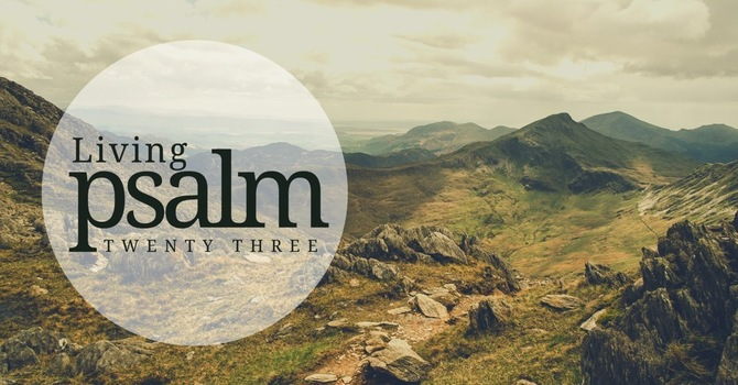 Trusting The Shepherd In The Valley