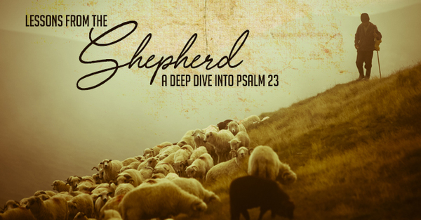 Lessons From The Shepherd: A Deep Dive Into Psalm 23