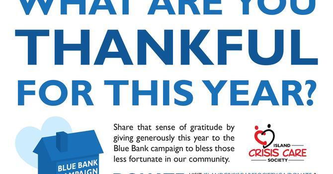Blue Banks Campaign image