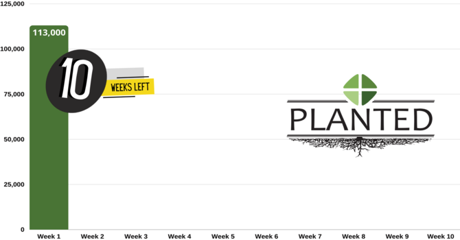 PLANTED CAMPAIGN COUNTDOWN image