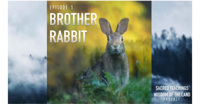 Episode 1: Brother Rabbit