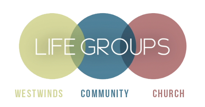 Mixed Adult Life Group