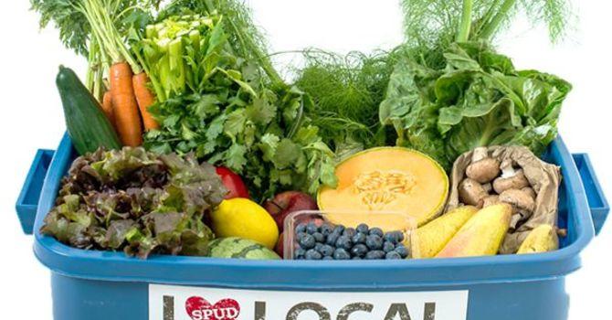 SPUD Organic Produce Fundraiser