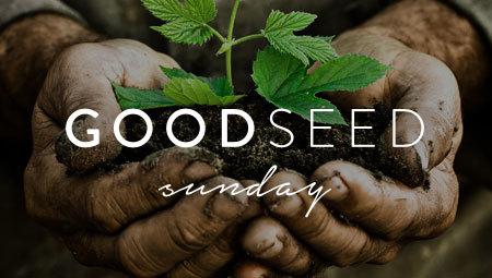 Good Seed Sunday