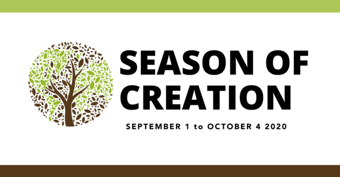 Volunteering and Support Opportunities during the Season of Creation image