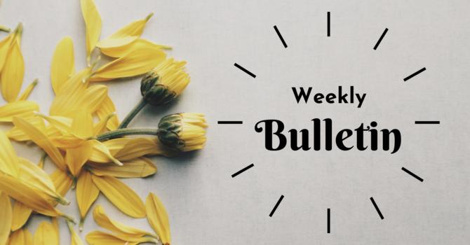 Bulletin | May 10, 2020 image