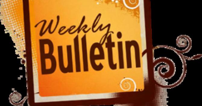 St. Johns Weekly Bulletin - January 24, 2021 image