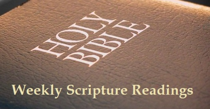 Scripture Readings for October 14th 2018 image