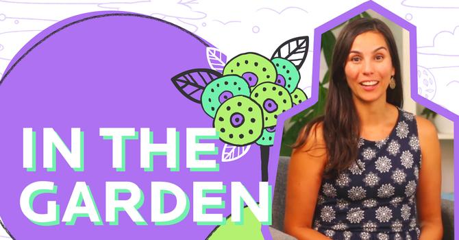 In the Garden | Older Kids image
