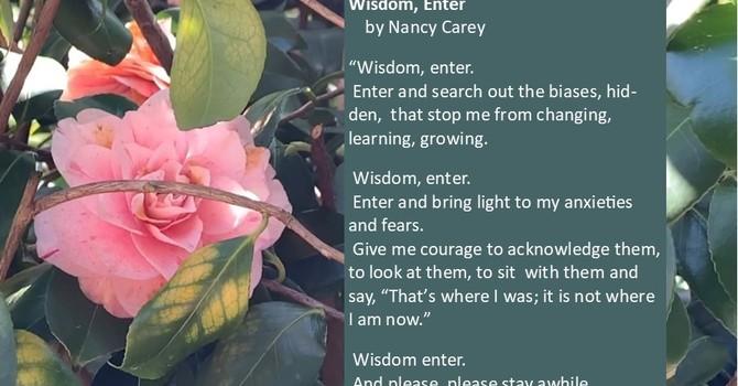 Wisdom, Enter  by Nancy Carey