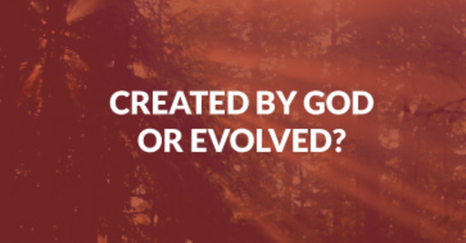 Created by God or Evolved?