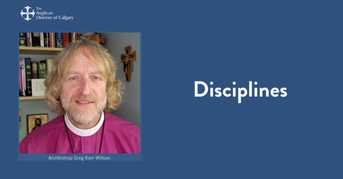 Disciplines image