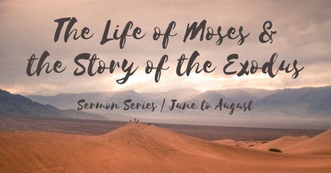 The Life of Moses & the Story of the Exodus image