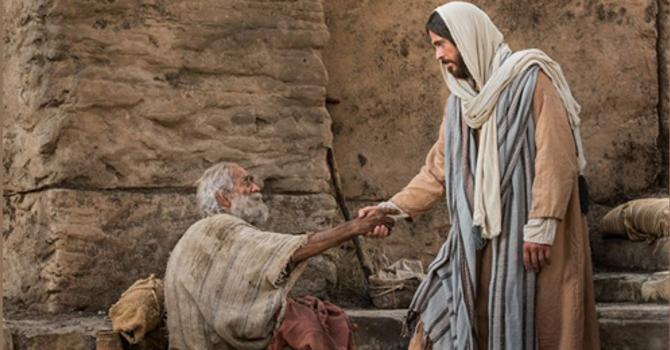 Bulletin:Fourteenth Sunday After Trinity image